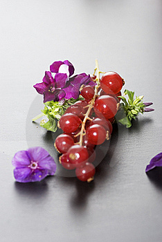 Red Fruits Royalty Free Stock Photos - Image: 17604508