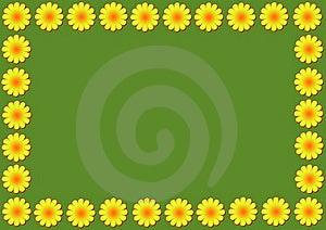 Daisy Flowers Illustration Stock Image - Image: 17612241