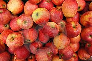 Apple Stock Images - Image: 17618934