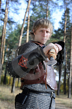 Armour Stock Images - Image: 17628404