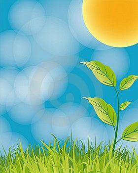Nature Illustration Stock Image - Image: 17630071