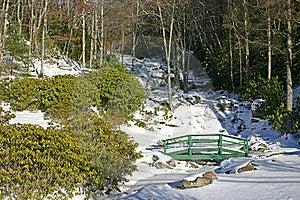 Newland Falls Frozen Royalty Free Stock Image - Image: 17631806