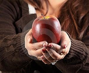 Fruit Gift Stock Image - Image: 17642361