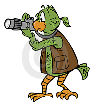 Photographer Parrot Royalty Free Stock Images - Image: 17651689
