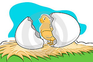 Chick With Broken Egg Royalty Free Stock Photo - Image: 17665565