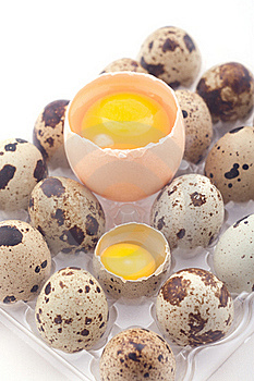Chicken And Quail Eggs Stock Image - Image: 17669821