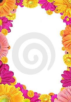 цветастая рамка цветков Стоковая Фотография RF - изображение: 17683717