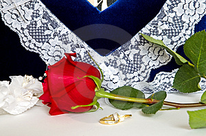 Wedding Rings And Roses-4 Stock Images - Image: 1773304