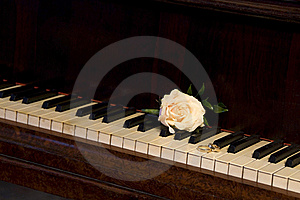 Rings On The Piano Stock Photography - Image: 17716712