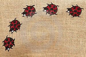 Ladybird Horizontal Stock Image - Image: 17716731
