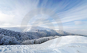 Frozen Forest And Meadows In Carpathians Panorama Stock Photography - Image: 17717682