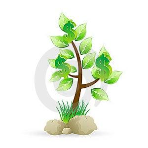 Dollar Tree Royalty Free Stock Photo - Image: 17721755