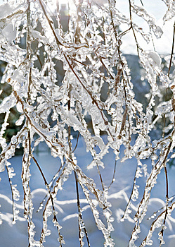 Winter Background Royalty Free Stock Images - Image: 17731169