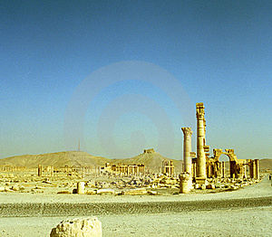 Palmyra In Syria Stock Photo - Image: 17732790
