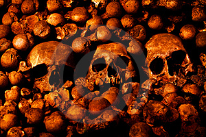 Human Skulls And Other Bones Stock Image - Image: 17736961