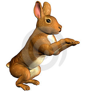 Hare In Pose Stock Photos - Image: 17737603
