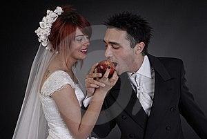 Wedding Couple Stock Image - Image: 17738561