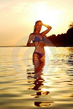 Woman In Ocean Stock Photo - Image: 17743730