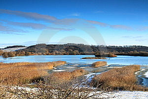 Nature Reserve Stock Images - Image: 17765814