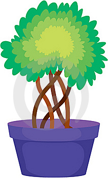 Plant Royalty Free Stock Photo - Image: 17787015
