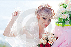 Pretty Bride Royalty Free Stock Photography - Image: 17789037