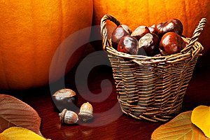 Autumn Still Life Royalty Free Stock Photos - Image: 17790748