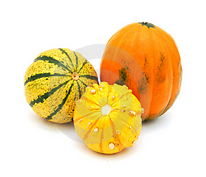 Mini Pumpkins Isolated Royalty Free Stock Photos - Image: 17792808