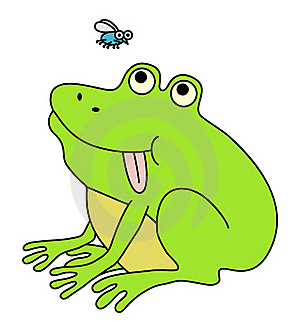 Fat Funny Frog Stock Photos - Image: 17815283