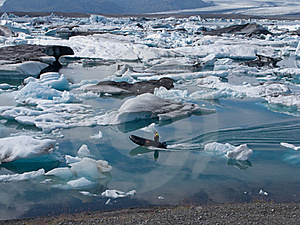 Icebergs 2 Royalty Free Stock Photography - Image: 17837077