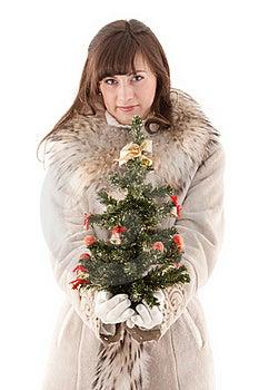 Girl In Fur Coat Royalty Free Stock Image - Image: 17837706