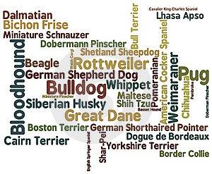 Dog Breed Word Cloud Stock Photos - Image: 17846613