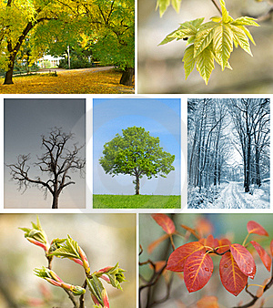 Season Landscape Stock Image - Image: 17855471