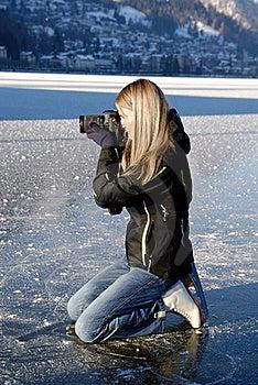 Paparazzi On Ice Royalty Free Stock Photos - Image: 17856198