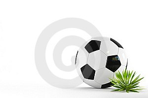 Football & Grass Stock Images - Image: 17856334