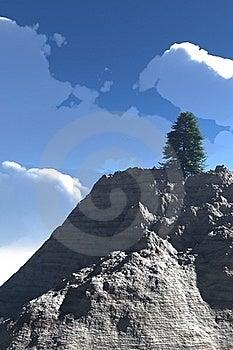 Tree In The Peak Stock Photo - Image: 17878050