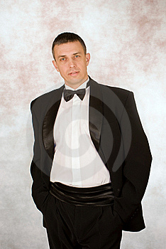 Portrait Of The Successful Man Royalty Free Stock Image - Image: 17893326