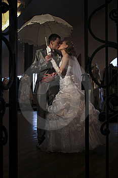 Happy Newly-married Couple Royalty Free Stock Images - Image: 17904719