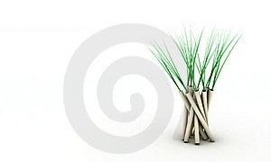 Vase Royalty Free Stock Photo - Image: 17911515