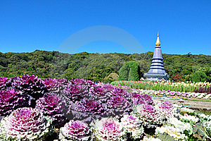 The Stupa Phra Mahathat Naphamethanidon Stock Photography - Image: 17919832
