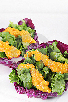 Red Cabbage Cups With Miso Carrot Dressing Royalty Free Stock Images - Image: 17932059