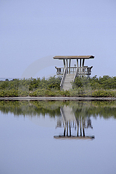 Wooden Observation Tower Reflecting In Water Stock Photo - Image: 17934870
