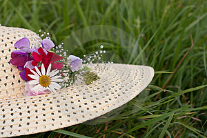 A Woman Hat  On A Green Grass Royalty Free Stock Images - Image: 17946779