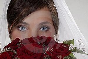 Big Blue Eyes Stock Images - Image: 17957624