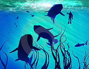 Sharks And Diver Royalty Free Stock Image - Image: 17965646