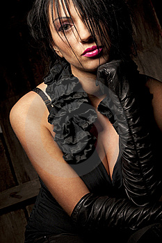 Woman With Silky Black Hair Stock Image - Image: 17985061