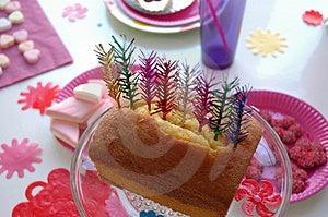 Festlig tårta Royaltyfri Bild