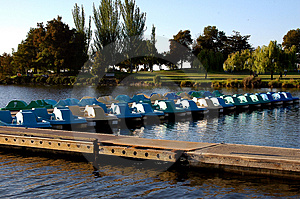Paddle Boats In For Day Stock Image
