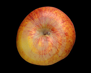 Red And Yellow Apple Top View Stock Image