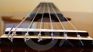 Guitar Free Stock Photo