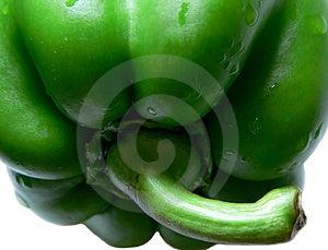 Green Pepper #5 Stock Photos